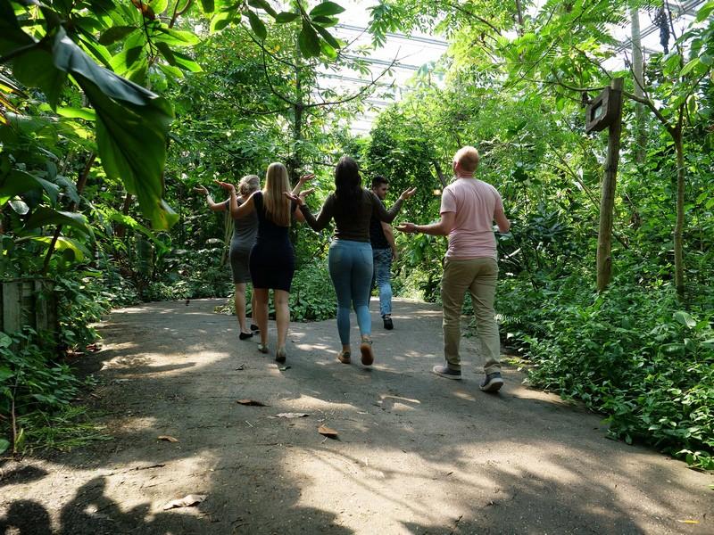 tropische regenbuien wildlands