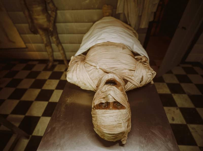 mummie walibi belgium halloween